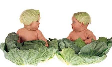 cavolo-bambini.180x120