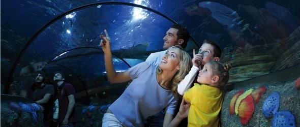 Gardaland-SEA-LIFE-Aquarium_590.180x120