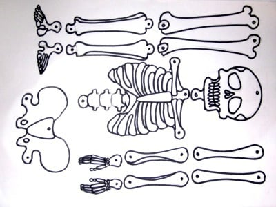 scheletrino_400.180x120