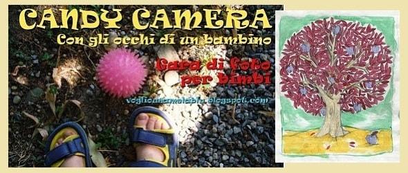 candycamera_590.180x120