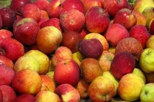 frutta-400