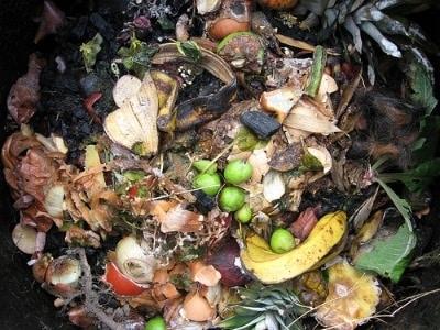 compost-400.180x120