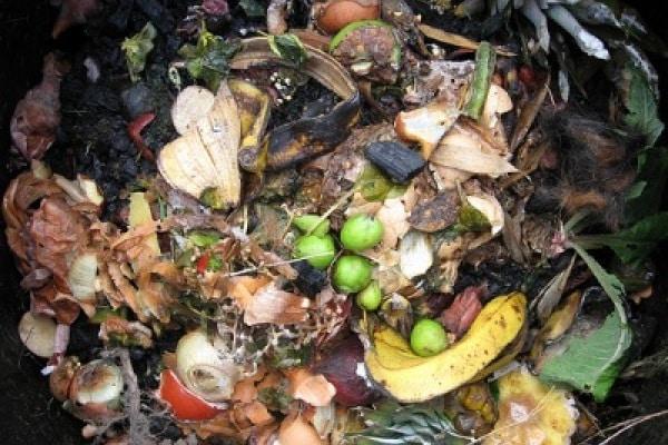Costruire una compostiera insieme ai vostri bambini