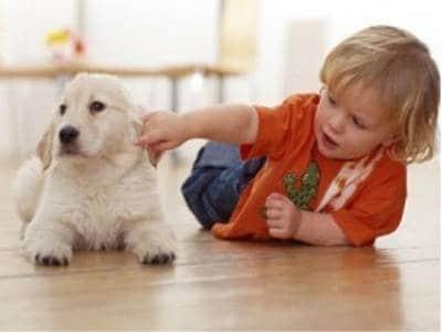 bambino-con-cane-400.180x120