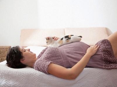 gatto-gravidanza-400.180x120
