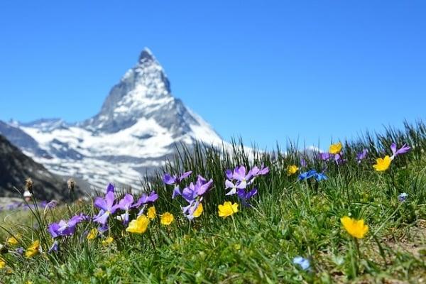La mia esperienza di mamma in Svizzera