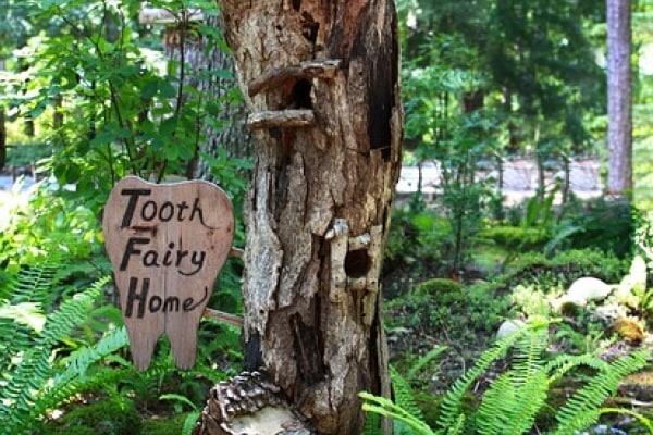 fata dentina
